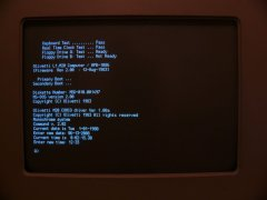 The MS-DOS prompt